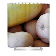 Butternut Squash Shower Curtain