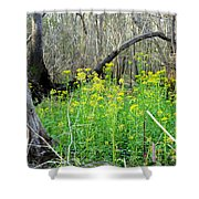 Butterweed Florida Wildflower Shower Curtain