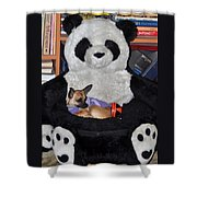 Button And The Panda Bear Shower Curtain