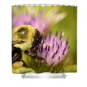 Buzzy Bee Shower Curtain