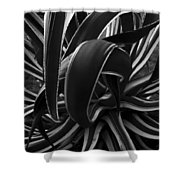 Bw Variegated Agave Shower Curtain