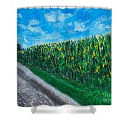 By An Indiana Cornfield The Road Home Shower Curtain