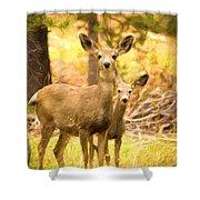 By Mama's Side - Photo Manipulation - Mule Deer - Casper Mountain - Casper Wyoming Shower Curtain