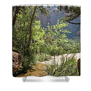 By The Emerald Pools - Zion Np Shower Curtain