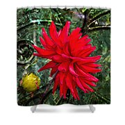 By The Garden Gate - Red Dahlia Shower Curtain
