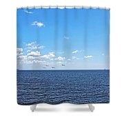 Bye Bye Birdies Panoramic Shower Curtain