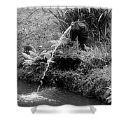 Byodo In Temple 2 Shower Curtain