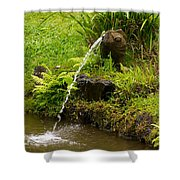 Byodo In Temple Shower Curtain