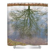 C And O Canal Tree Reflection Shower Curtain