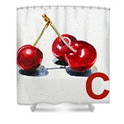 C Art Alphabet For Kids Room Shower Curtain