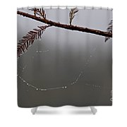 C Is For Cypress Shower Curtain