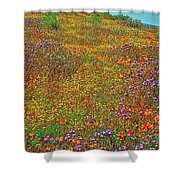 Ca Poppies And Goldfields And Lacy Phacelia In  Antelope Valley Ca Poppy Reserve-california  Shower Curtain