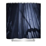 Cabbage Palm No. 2 Shower Curtain