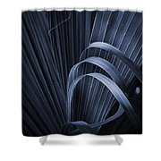 Cabbage Palm No. 3 Shower Curtain
