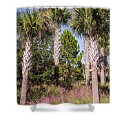 Cabbage Palm Shower Curtain