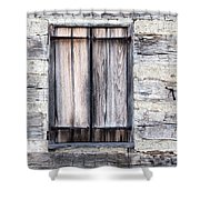 Cabin Fever Shower Curtain by Dale Kincaid