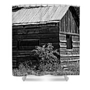 Cabin In The Wilderness Shower Curtain