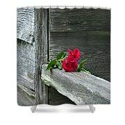 Cabin Rose Shower Curtain