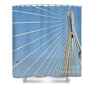 Cable Bridge Detail Shower Curtain