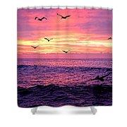 Cabo San Lucas Sunrise Shower Curtain