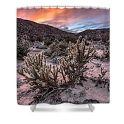 Cac-dusk Shower Curtain