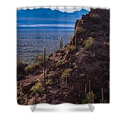 Cacti Covered Rock At Tucson Mountains Shower Curtain