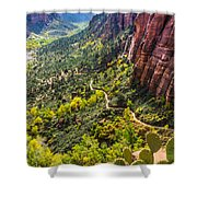 Cacti View Of Zion Shower Curtain