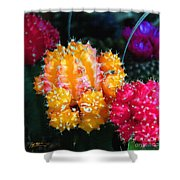 Cacti Watercolor Effect Shower Curtain