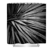 Cactus 5250 Shower Curtain
