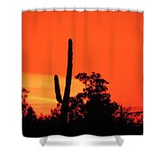 Cactus Against A Blazing Sunset Shower Curtain