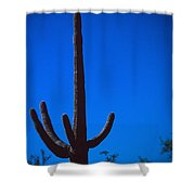Cactus And Moon Shower Curtain