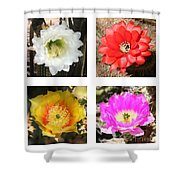 Cactus Blooms Collage Shower Curtain