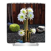 Cactus Blooms Shower Curtain