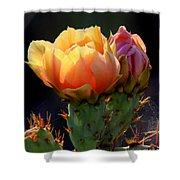 Cactus Blossom Shower Curtain