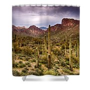 Cactus Canyon  Shower Curtain