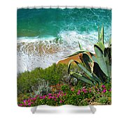 Cactus Coast Shower Curtain