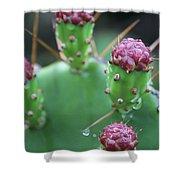 Cactus Dew Shower Curtain