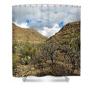 Cactus Everywhere Shower Curtain