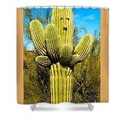 Cactus Face Shower Curtain