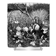 Cactus Fence- Hill Country Texas Shower Curtain