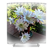 Cactus Flower Perfection Shower Curtain