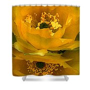 Cactus Flower Song Shower Curtain