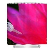 Cactus Flower Summer Bloom Shower Curtain