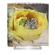 Cactus Flower With Ball Of Bees Shower Curtain
