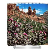 Cactus Flowers And Red Rocks Shower Curtain