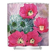Cactus Flowers I Shower Curtain