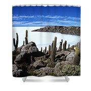 Cactus Forest And Salar De Uyuni Shower Curtain