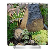 Succulent Garden Shower Curtain