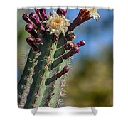 Cactus In Bloom Shower Curtain