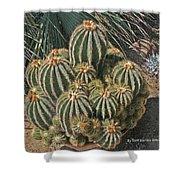 Cactus In The Garden Shower Curtain